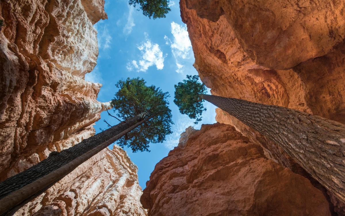 Bryce Canyon National Park Alle Tips Reviews En Reizen