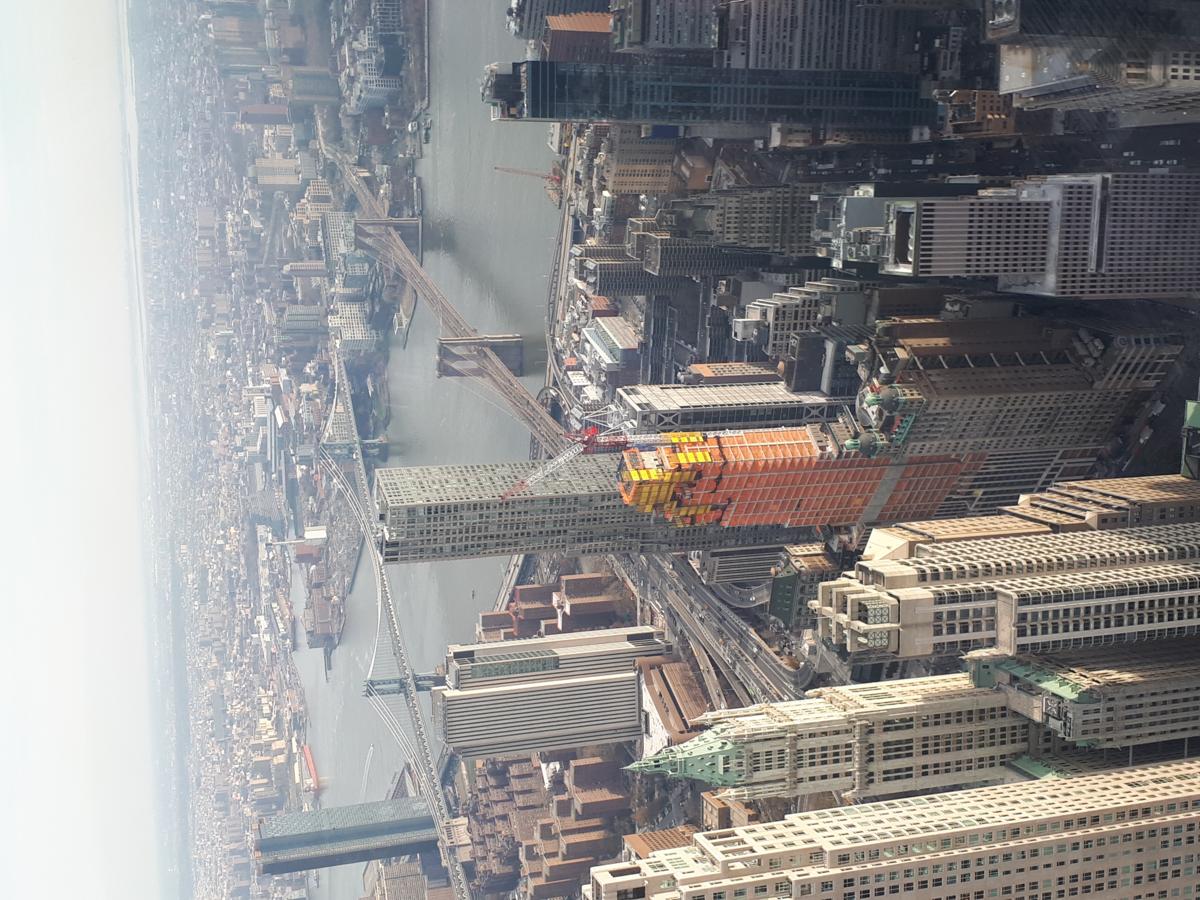 Mondriaan verwierf wereldfaam in Parijs en New York.
